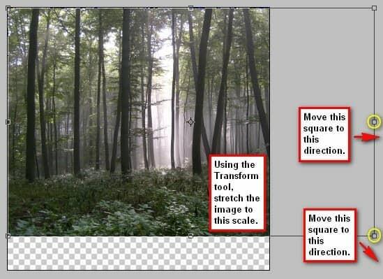 step2b_transform