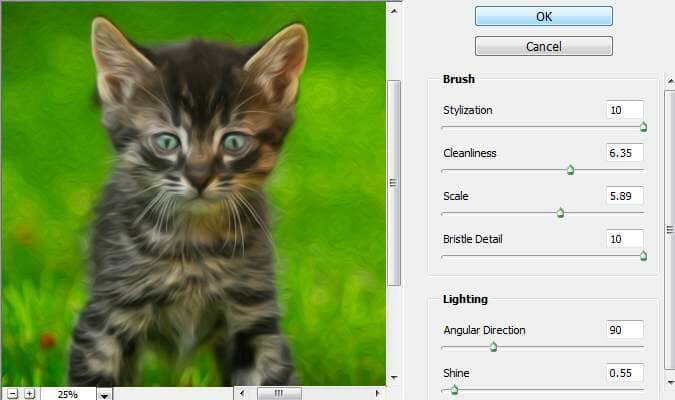 Photoshop CS6 Oil Paint filter
