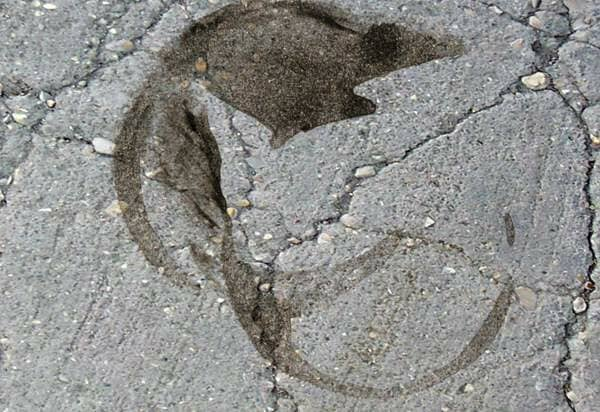 Oil stain on cement