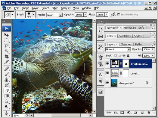 Photoshop Layer Mask Painting