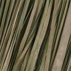 Dried Grass Textures