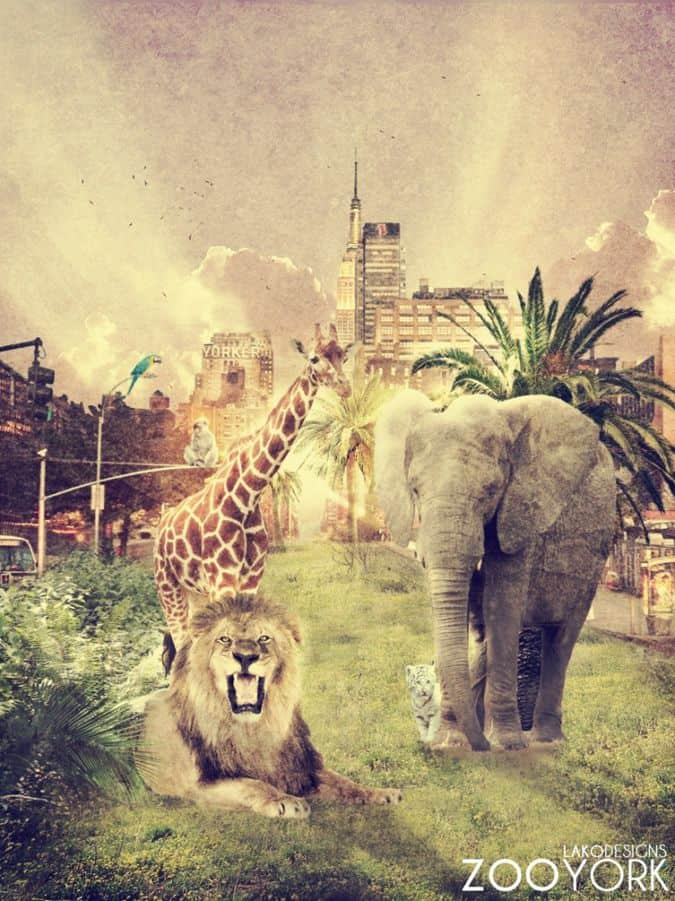 15 Wickedly Awesome Photomanipulations by Robin Lakowitz