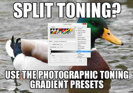 Split toning? Use the photographic toning gradient presets.