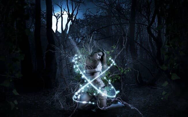 Create an Alluring and Magical Forest Photo Manipulation