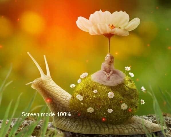 snail30a