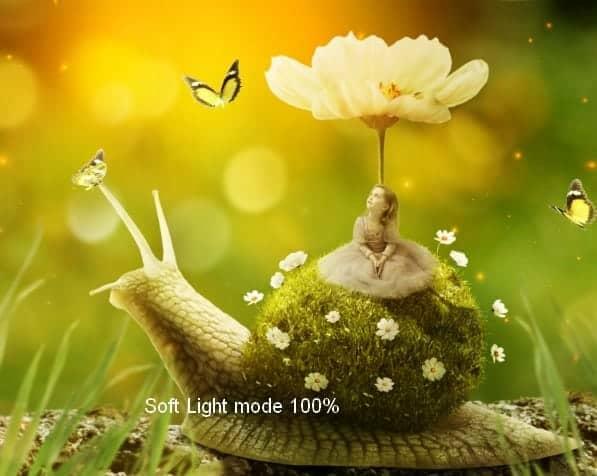 snail38a