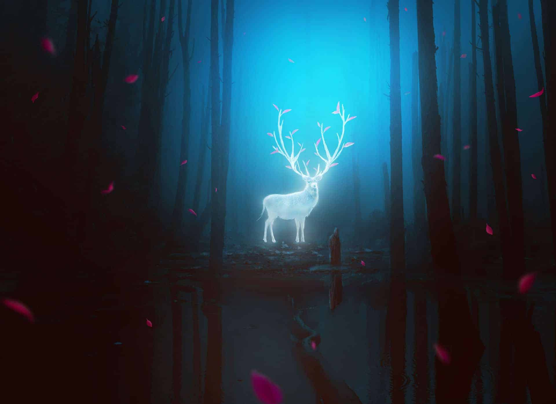 How to Create a Fantasy Deer Photo Manipulation With Adobe Photoshop