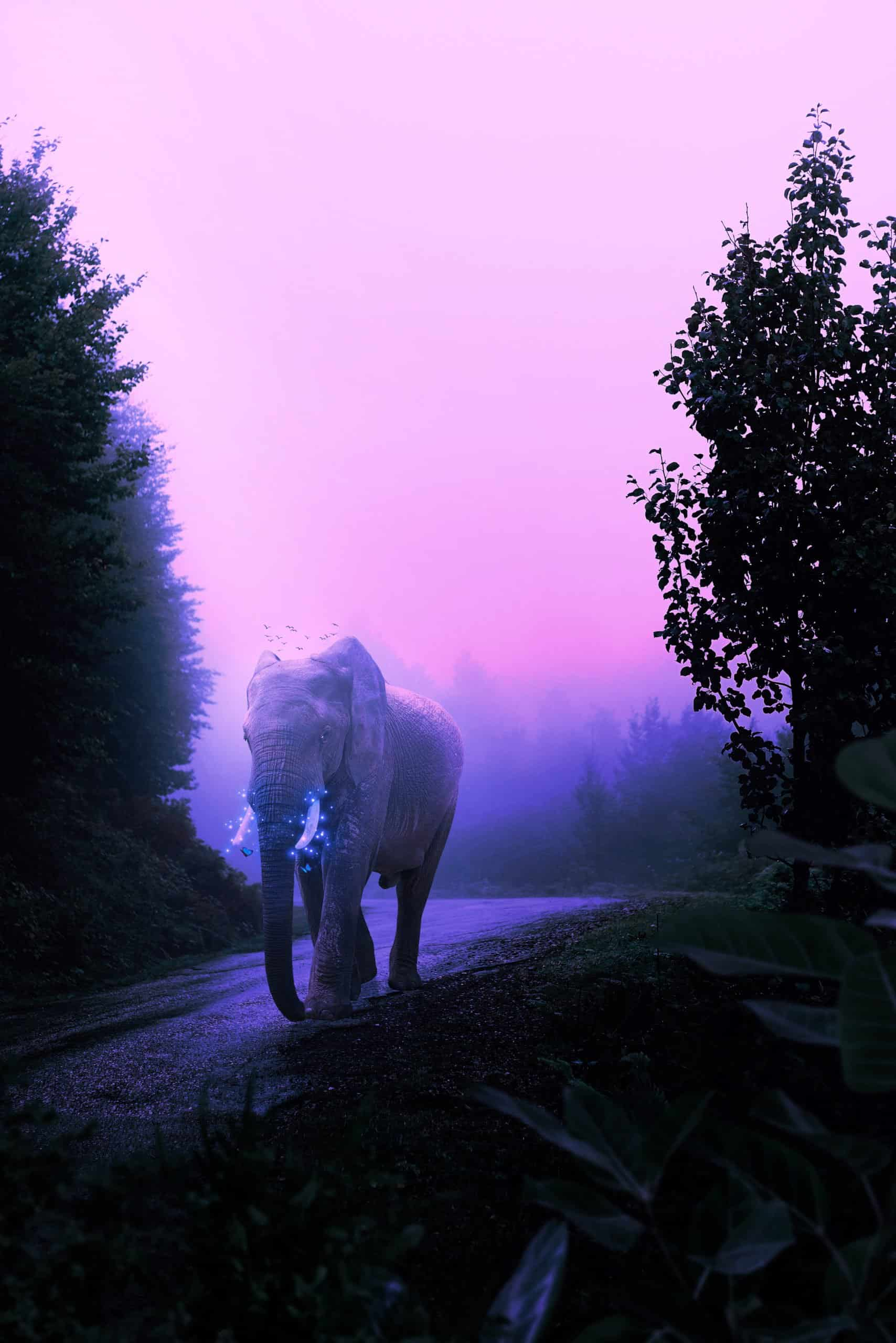 How to Create a Mystical Glowing Elephant in Photoshop