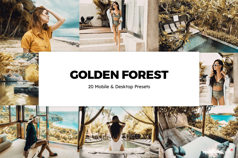 8 Free Golden Forest Lightroom Presets and LUTs