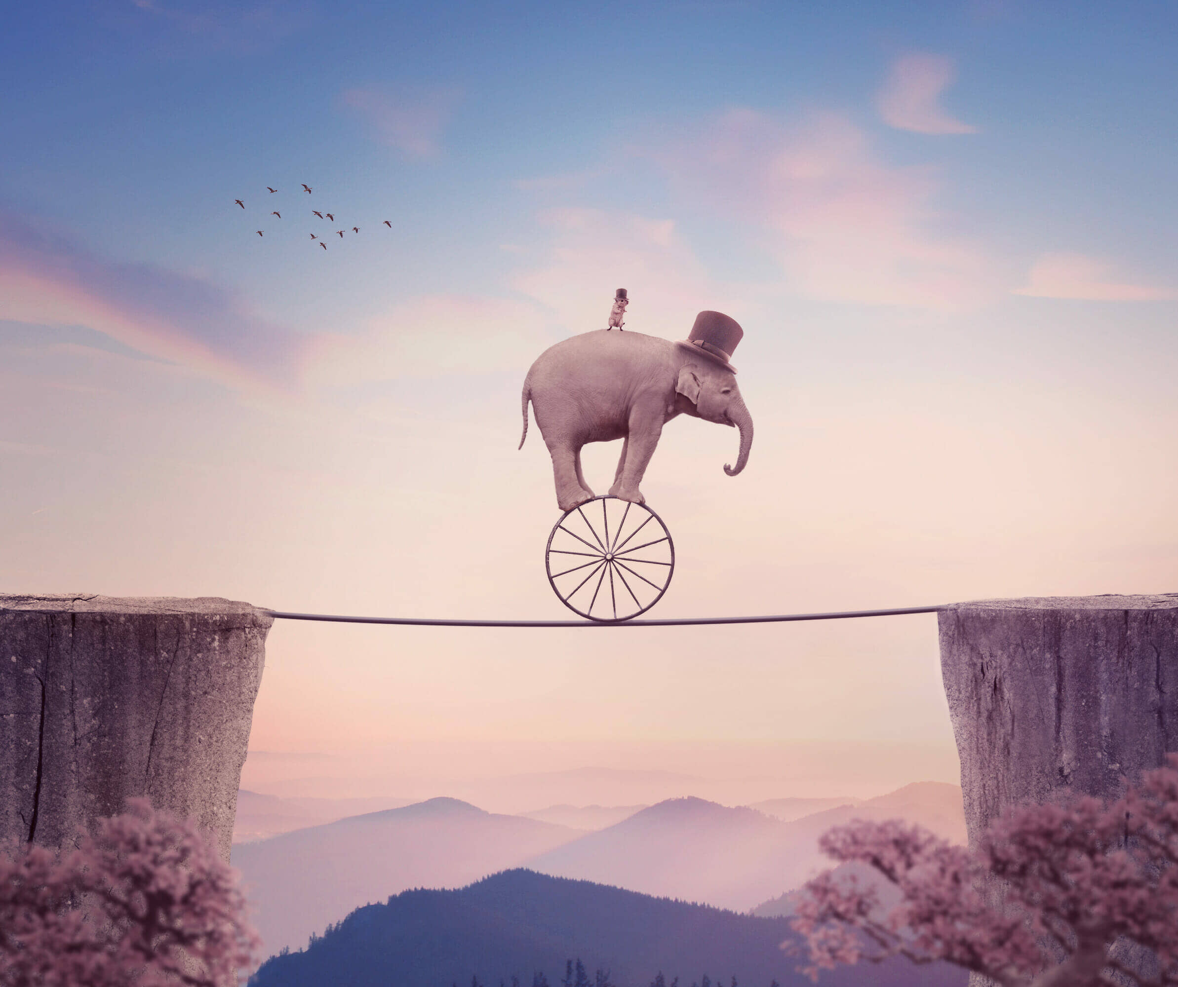 How to Create a Surreal Elephant Photo Manipulation with Adobe Photoshop