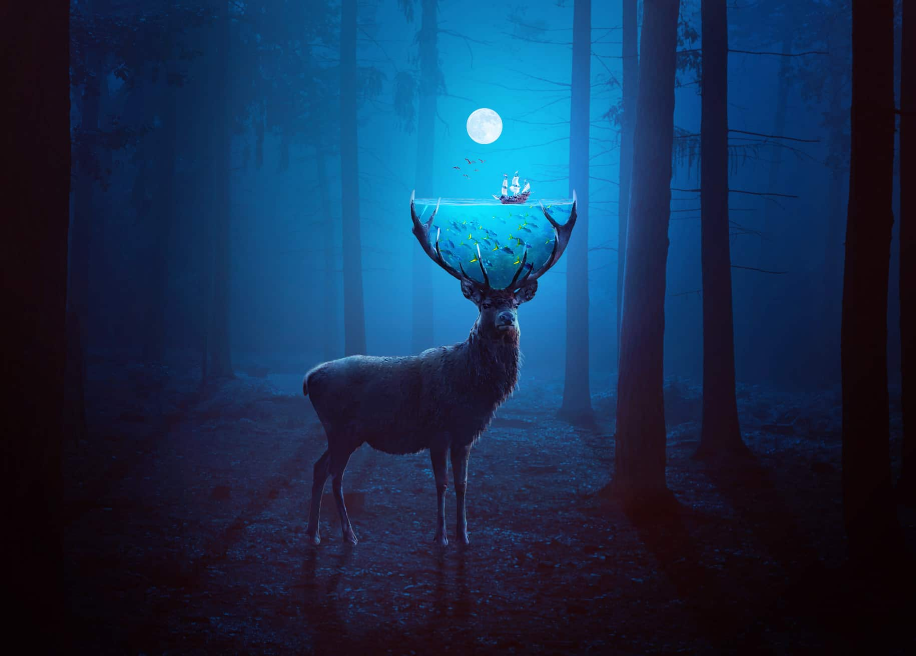 How to Create a Surreal Deer Photo Manipulation with Adobe Photoshop