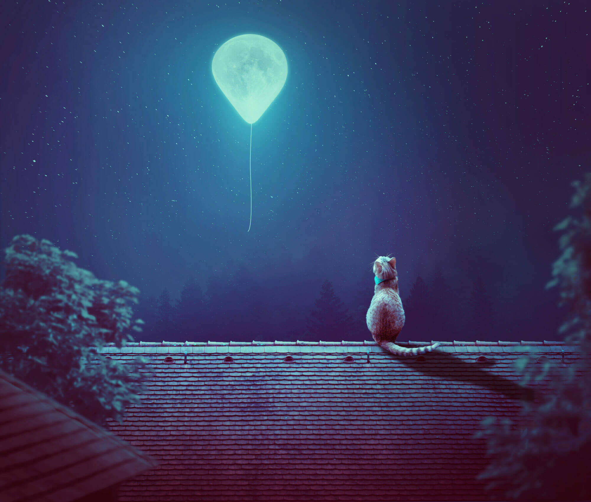 How to Create a Moon Balloon Scene Photo Manipulation With Adobe Photoshop