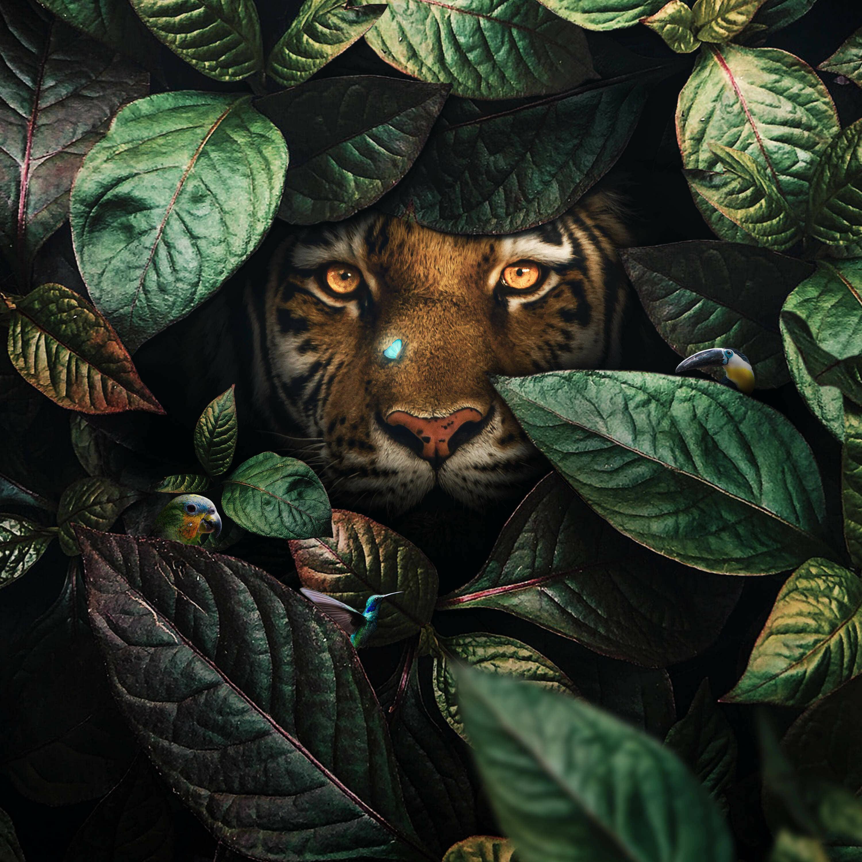 Floral Tiger Photo Manipulation Tutorial
