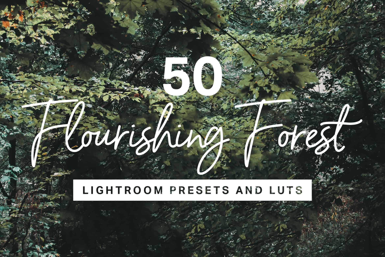 10 Flourishing Forest Lightroom Mobile and Desktop Presets