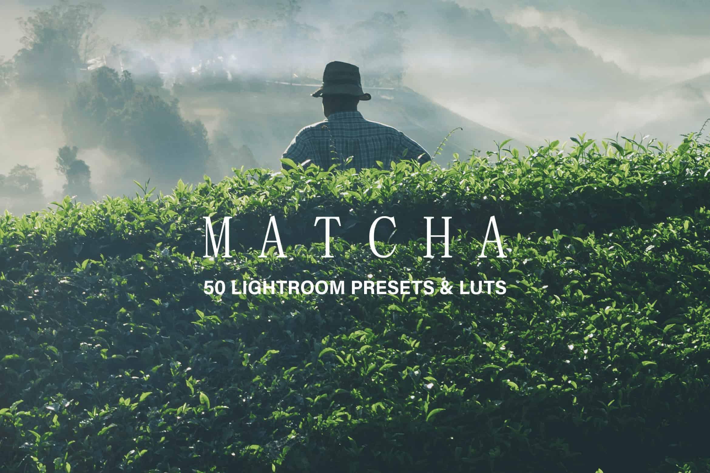 10 Matcha Green Lightroom Presets