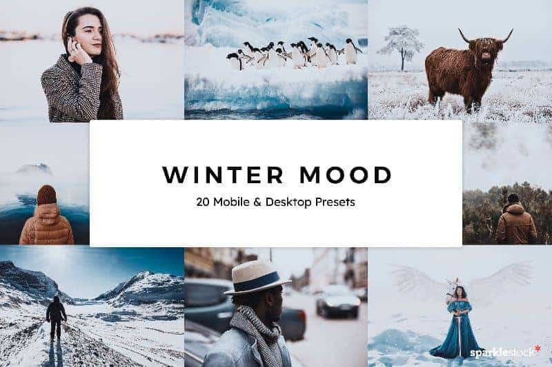 Free: 8 Winter Mood Lightroom Presets and LUTs
